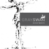 GraySwan Investments (Northcliff, Johannesburg)